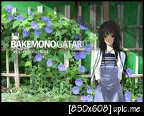 [pic] รูป bakemonogatari Sample-324979d973cb53da8913d53b21d71b26
