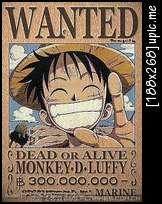 One  Piece~ Qhu8i