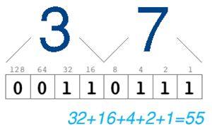 التحويل بين العشري decimal و الثنائى المكود عشري binary-coded-decimal (BCD) 99262693B2F1435AB1E950DBCC76AF0D