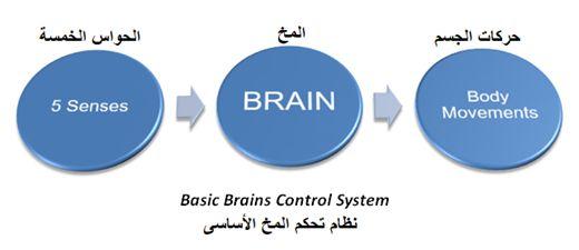 المتحكم المنطقى القابل للبرمجة (PLC) ومنطق السلم Ladder Logic 99f0aaa9a5344060bb174ba913fee70b