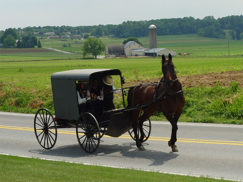 Fiction By Our Members Lancaster_County_Amish_03