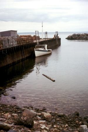موسوعة المد و الجزر- حصريا على منتدى واحة الإسلام Bay_of_Fundy_High_Tide