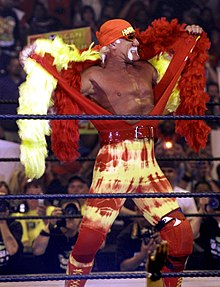 Wrestling! 220px-Hulk_Hogan3