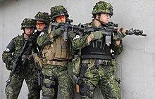 التدريب العسكري تطلعات وعقبات 220px-Danish_Military_Police