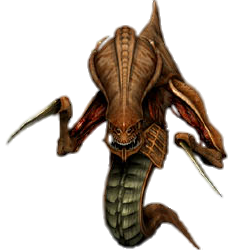 What race should Amos play in SC2? Hydralisk_(StarCraft)