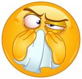 Pollution de l'air et aménagement de la maison 16331875-emoticon-essuyant-son-nez