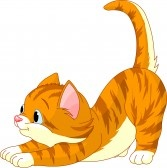 Une ptite chatte qui veut vous rejoindre 7056670-