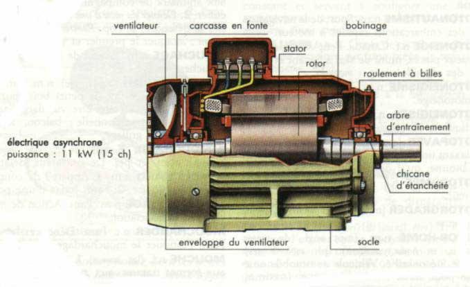 صور المحرك الكهربائي الثلاثي الطور 2_1