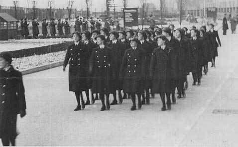 Royal Navy Section Belge - Page 5 Davis1