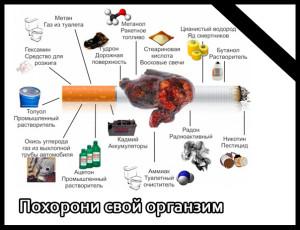 ИСТИНА или ЛОЖЬ - Страница 4 Svideteli-iegovy-i-ih-zaprety3-300x230
