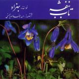 فیلمها و برنامه های تلویزیونی روی طاقچه ذهن کودکی - صفحة 15 D7sj_behzad.taabe.banafsheh.dahe.60_thumb