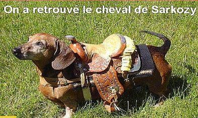 Poupée vaudou  Nicolas Sarkozy 1225307303