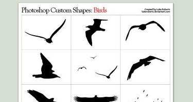 33 مجموعة اشكال لبرنامج Adobe Photoshop Birdshapes