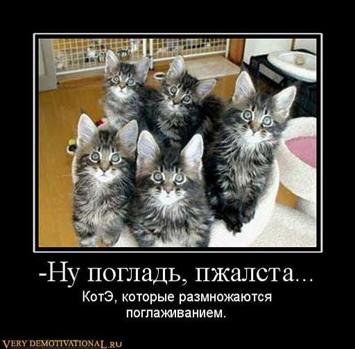 подборка от стасевича 1298638553_713879_-nu-poglad-pzhalsta