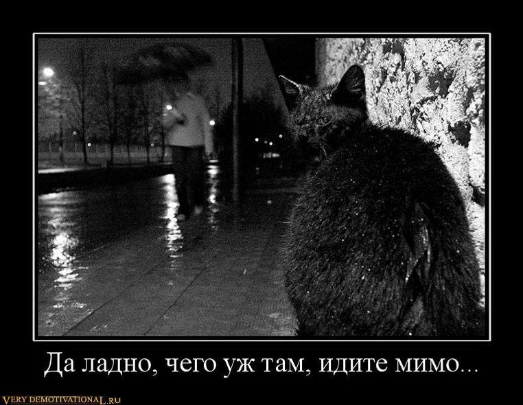 подборка от стасевича 1298639622_183706_da-ladno-chego-uzh-tam-idite-mimo