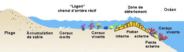 [Archive 36ème] Salon de détente  - Page 2 Lagon1