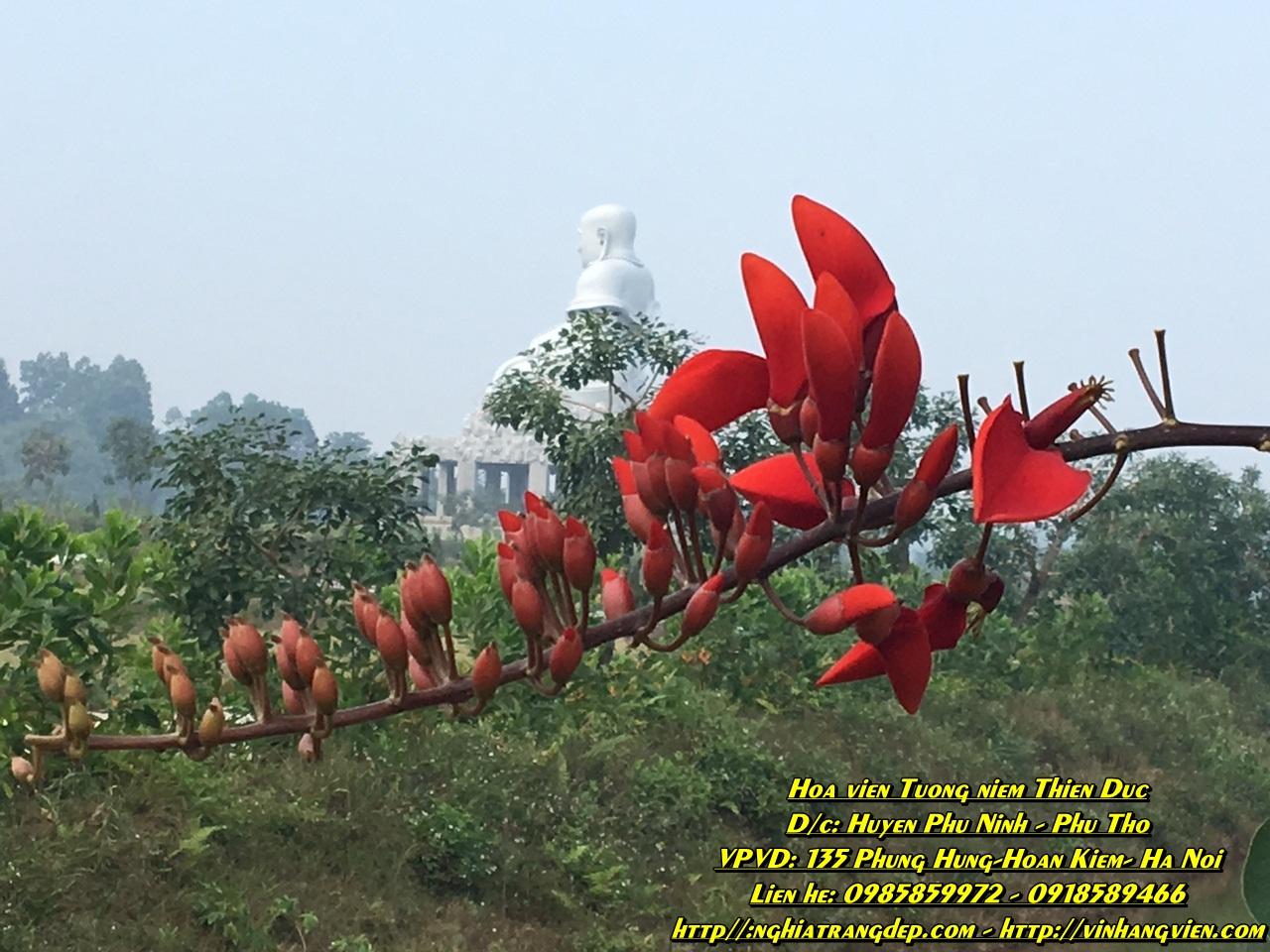 Công viên nghĩa trang Thiên Đức Siêu Nghĩa Trang Sinh Thái Cong-vien-thien-duc-nghia-trang-hien-dai-mien-bac
