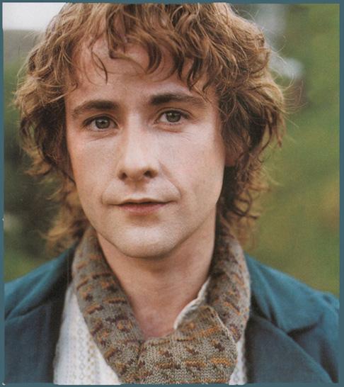 "Peregrin ""Pippin"" Tuk Pippin_took"