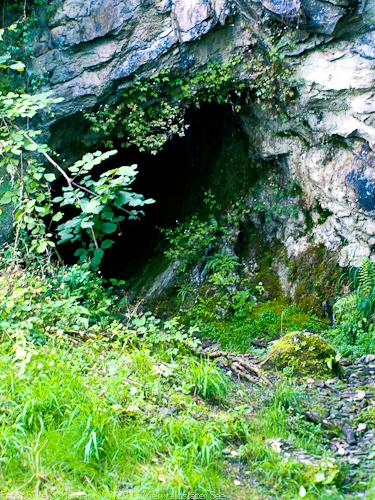 Welpen Höhle Hoehle