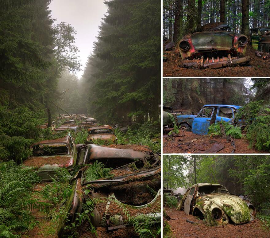 La fin de la fin du monde, climat et evolution Nature-reprend-droits-gagne-combat-contre-civilisation-8