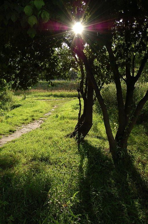 [bank] Vos photos de référence perso : Environnements naturels DSC_0122