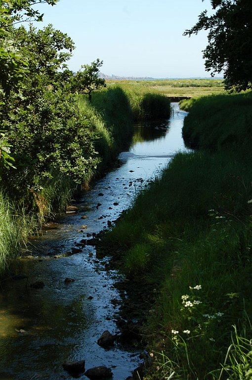 [bank] Vos photos de référence perso : Environnements naturels DSC_0163