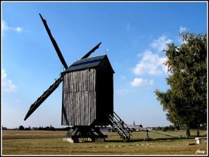 Le moulin de Martin du 6 Mai  trouvé par Blucat 17-maves-300x226