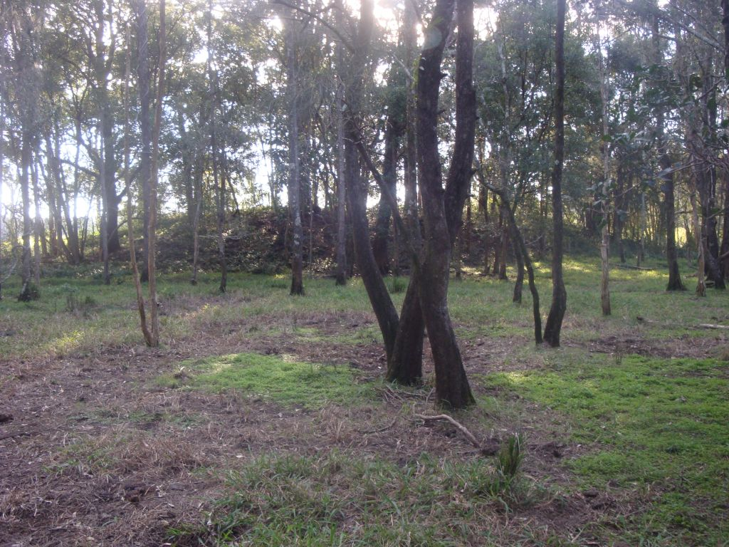 Australia's Stonehenge (Part 2): Indigenous Elders & Custodians Share the Truth About Ancient Stone Arrangement Site Baby_mound