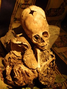 Beyond Paracas: Humanoid Remains Found in Cusco, Peru Beyond-Paracas-Humanoid-Remains-Cusco-Peru-1-225x300