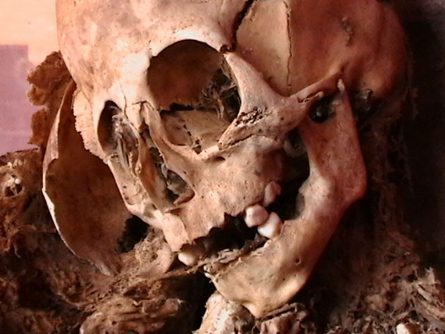 Beyond Paracas: Humanoid Remains Found in Cusco, Peru Beyond-Paracas-Humanoid-Remains-Cusco-Peru-3