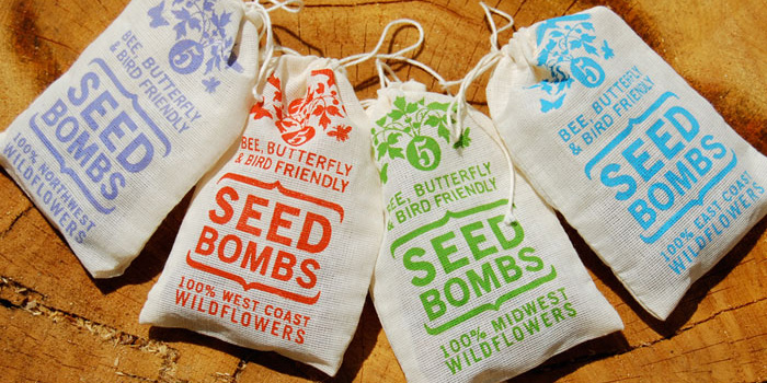 Seed Bombs: A Creative (and Fun) Mission to Save the Bees and Butterflies Seed-Bombs-A-Creative-and-Fun-Mission-to-Save-the-Bees-and-Butterflies