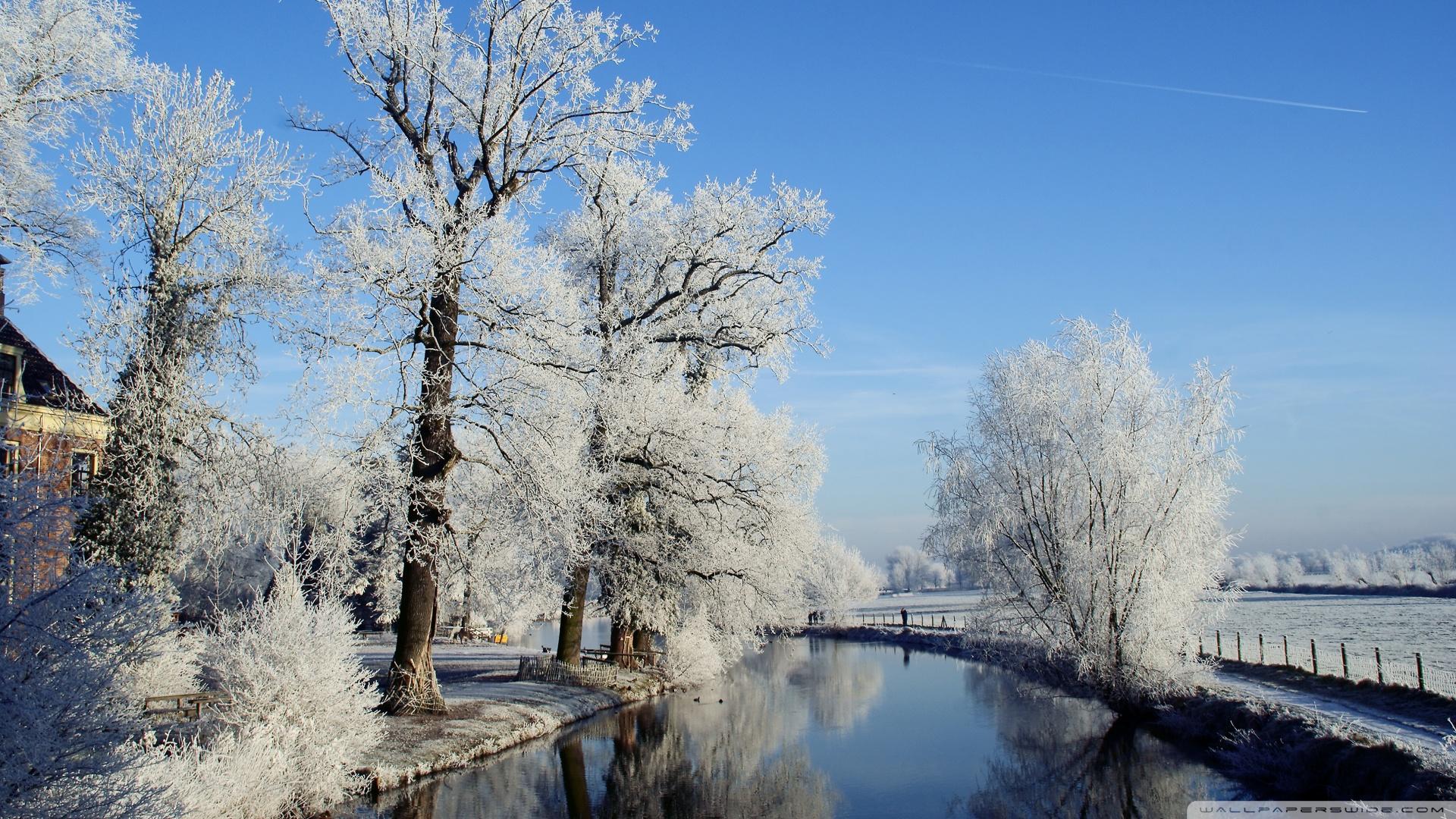 Holandija Winter-landscape-utrecht-netherlands_00438094