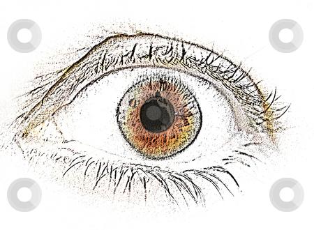 Comic Reviews Cutcaster-photo-100826467-Human-eye-sketch-front-view