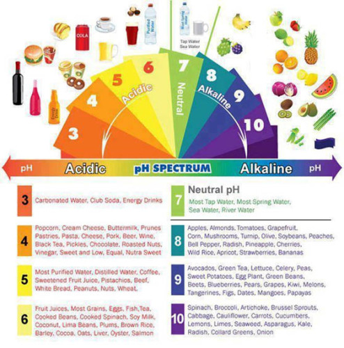 Understanding Blood pH And It's Critical Role In The Prevention Of Cancer Phbalance-494x500