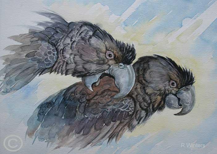 Вымершие и уничтоженные виды попугаев и других птиц WintersEntrybrbilldWEB