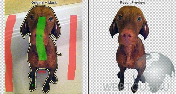 Как легко и быстро удалить фон с фотографии онлайн Mask-fon
