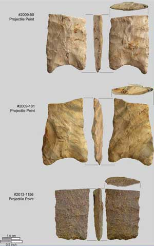 10,000-Year-Old Stone Tool Site Discovered in Suburban Seattle Bear-Creek-stone-points