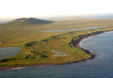 Woolly Mammoths Survived on Alaska Island Until Just 5,600 Years Ago, New Study Shows St.-Paul-island-1