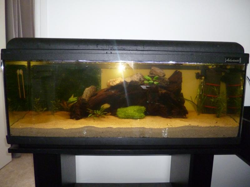 JmenBaLeStix's Aquarium BacClean