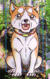 Koshiro Joen poika Spinekoshiro