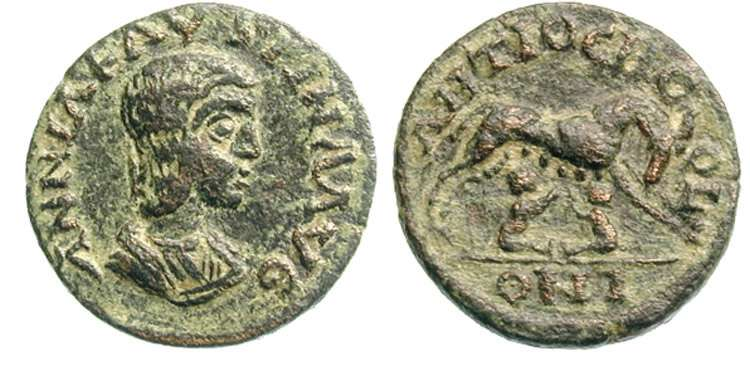 مسكوكات الامبراطوره أنيا  اوريليا فوستينا _antiochPisidia_SNGParis_1184