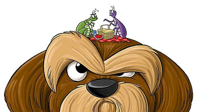 Как обработать собаку от клещей.  1464428074_34