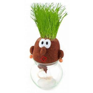 эколюдик или травянчик своими руками  Travyanchiki_svoimi_rukami_foto_6