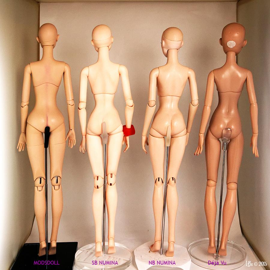 Comparaisons corps fashion dolls: images & liens Comparison16Back