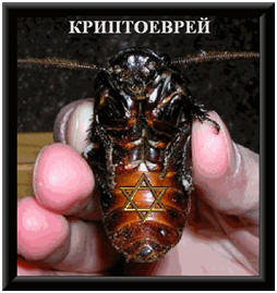 Метафизика насекомых Crypto_bug