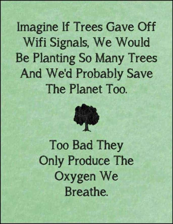 Doza smeha  - Page 13 If-only-trees-had-wifi-685x884
