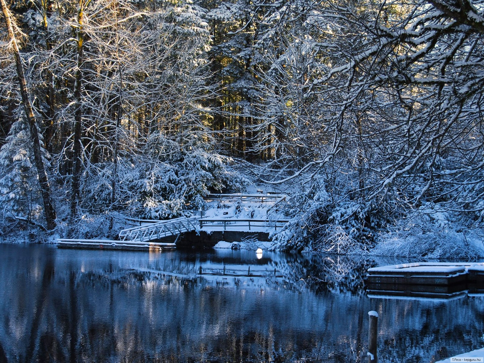 Wallpaper ไหนว่าปีนี้จะหนาวสุดในรอบ 30 ปี 50 Pic 230895-svetik