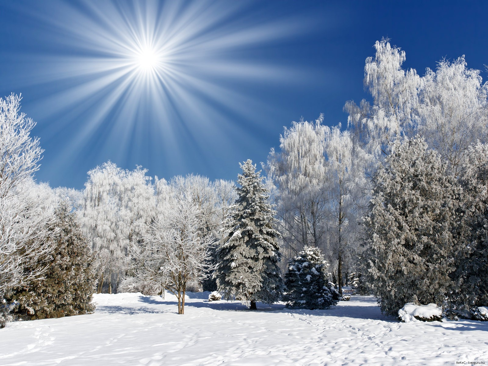 Wallpaper ไหนว่าปีนี้จะหนาวสุดในรอบ 30 ปี 50 Pic 230901-svetik