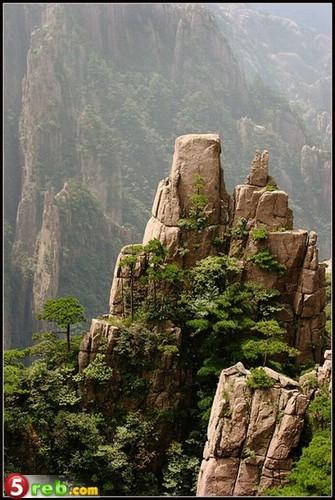 جبال الافاتار 215