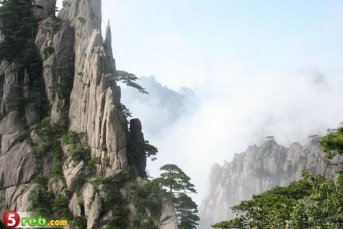 جبال الافاتار 219